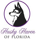 Husky Haven Of Florida