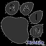Rain Orlando
